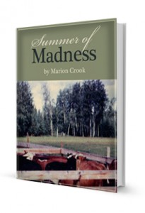 Summer of Madness (ebook)